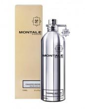 Montale Paris Fougeres Marine Eau de Parfum 100ml unisex 46284