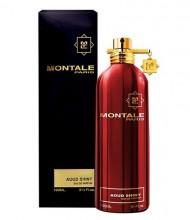 Montale Paris Aoud Shiny Eau de Parfum 100ml unisex 25975