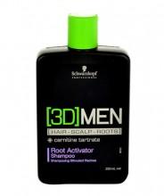 Schwarzkopf 3DMEN Shampoo 250ml miehille 64425